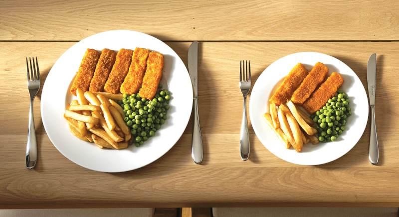 Tabel Kalori Makanan Sehari Hari Untuk Program Diet Sehat